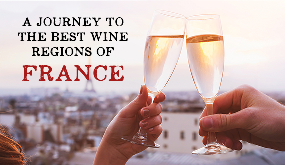 A Journey to the Best Wine Regions of France